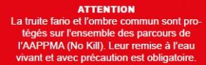 Info-no-kill
